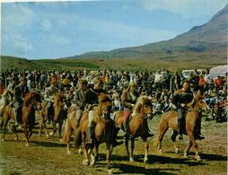 ICELAND -  REYKJAVIK - PONY-RIDING - PHOTO MATS WIBE LUND - 1970s (BG674) - IJsland