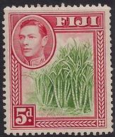 Fiji 1940 KGV1 5d Sugar Cane MM SG 259 ( J1237 ) - Fiji (...-1970)