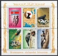 DPR Korea 1978 Sc. 1755a Woodpecker Preservation Picchio Sheet Perf. CTO - Korea, North