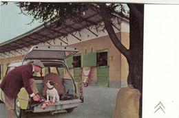 CITROEN DS -PUBBLICITA STATION WAGON - Voitures De Tourisme