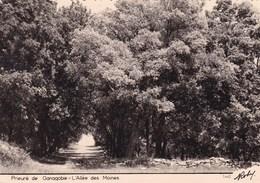 PRIEURE DE GANAGOBIE  L'ALLEE DES MOINES (dil356) - Autres Communes