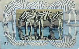 Afrique Du Sud,SOUTH AFRICA, Chip MTN, Fauna, Zebra - Zuid-Afrika