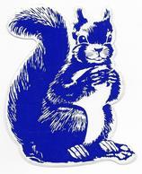 Stickers  1 Stuks Eekhoorn - Autres Collections