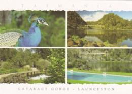 Cataract Gorge Multiview, Launceston, Tasmania - Unused - - - - Lauceston