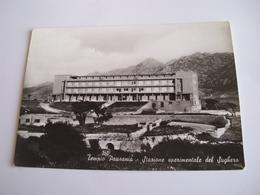 Sassari - Tempio Pausania Stazione Sperimentale Del Sughero - Sassari
