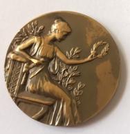 Médaille. En Reconnaissance Des 7 Anciens. C.R. L'Amicale Boondael - Ixelles. 1905 - 1955 - Professionnels / De Société