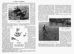 LA PECHE AU CORMORAN   1913 - Chasse/Pêche