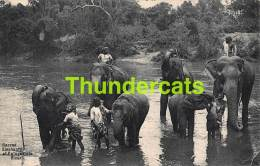 CPA SRI LANKA CEYLON CEYLAN SACRED ELEPHANTS AT KATUGASTOTA RIVER - Sri Lanka (Ceylon)