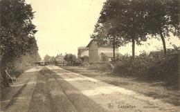 CAPPELLEN (Kapellen) - Heidestraat - Spoorovergang - Man Met Kruiwagen - Muurreclame Cacao Bensdorf - Edit. Wagemaekers - Kapellen