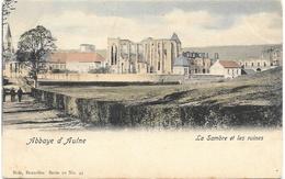 Abbaye D'Aulne NA9: La Sambre Et Les Ruines 1903 - Thuin