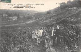 33 - GIRONDE / 333141 - Saint Michel De Fronsac - Le Labourage Des Vignobles - Bessoudoux - France