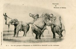 ELEPHANT(BARNUM ET BAILEY) CIRQUE - Éléphants