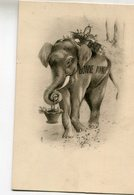 ELEPHANT(BONNE ANNEE) - Elephants