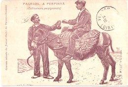 FR66 PERPIGNAN - Cultivateurs Perpignanais - Tampon Verso DELPONT Perpignan - Animée - Belle - Perpignan