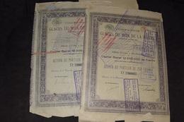 2X Glaces Du Midi De La Russie 250 Francs Capital 12 000 000 Francs 1919 (4) - Russie