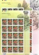 China - Taiwan (2013)  - 4 MS - /  Mushrooms - Funghi - Champignon - Pilze - Champignons