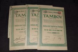 3X Société Minière Et Métallurgique Du Tambov 250 Francs 1911 (4) - Russie