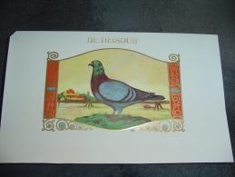 Ancienne étiquette Boite à Cigare  De Reisduif Pigeon (tabac) 25x16 Cm. - Documents
