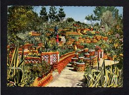 Maroc / Meknès / Vallée Heureuse D'Emile Pagnon / Plantes Exotiques - Meknes