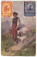 SOKOL / FALCON - VIDOVDAN 1921. SOKOLSKI SLET OSIJEK, KINGDOM Of YUGOSLAVIA, ART PC - Gebraucht