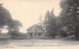 91-FORET DE SENART-N°378-H/0207 - Autres Communes