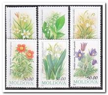Moldavië 1993, Postfris MNH, Flowers - Moldavië
