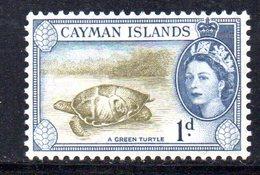 T1054 - CAYMAN 1953, Un Valore Integro Yvert 142  ***  Tartaruga - Cayman (Isole)