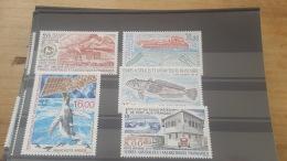 LOT 420469 TIMBRE DE COLONIE TAAF NEUF** LUXE - Terres Australes Et Antarctiques Françaises (TAAF)