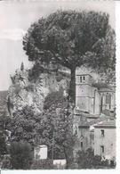 179 - CIRQUE DE MOUREZE - L'EGLISE, LE ROCHER ET SON PIN PARASOL - Non Classés