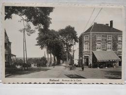 Paliseul. Avenue De La Gare. Animée. Hôtel De La Gare. Bière Artois. Tricycle. A. Bara Marrion. Ed Félix Labbé, Paliseul - Paliseul