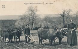 H177 - 19 - Au Labour - Types Et Scènes Champêtres - Francia