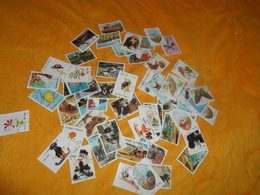 LOT DE 100 TIMBRES OBLITERES SAO TOME E PRINCIPE DANS LES ANNEES 1990. PLUSIEURS SERIES  OISEAUX, PLANTES, ANIMAUX... - Sao Tome And Principe