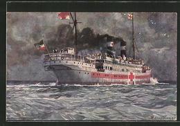 Künstler-AK Zeno Diemer: Lazarettschiff Auf Der See, Rotes Kreuz - Rotes Kreuz
