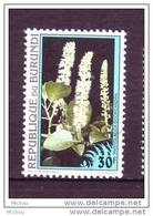 ##30, Burundi, Fleur, Flower - Burundi