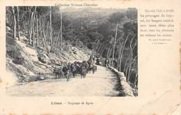 PIE-H-18-6062 : LIBAN. PAYSAGE DE SYRIE. TROUPEAU DE CHEVRES. - Lebanon
