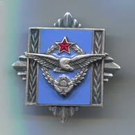 Military Army - Air Force Academy, Aviation Luftwaffe Pilot, Ex Yugoslavia Type1, Vintage Pin, Badge, Abzeichen, Enamel - Militair & Leger