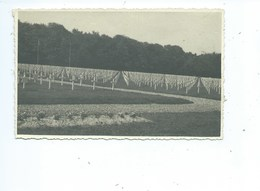 Hamm US Military Cemetery - Postcards