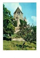 Cpm 77 - Provins - Tour De César - Donjon - Pommier Pomme - Provins