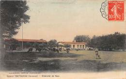 33 - GIRONDE / 333332 - Toctoucau - Domaine De Nau - France