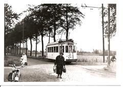 Hoevenen Krekelenberg  Tram - Plaatsen