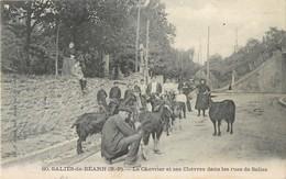SALIES-DE-BEARN RUES DE SALIES LE CHEVRIER ET SES CHEVRES 64 - Salies De Bearn