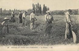 SCENES ET TYPES DES PYRENEES LA MOISSON RECOLTE FENAISON 64 - Frankrijk