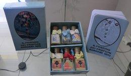 COFFRET IL FASCINO DEI PROFUMI - 6 X Eaux De Parfum 3,5 ML De BORSARI - Miniatures Modernes (à Partir De 1961)
