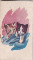 PETIT  ALMANACH POUR 1947 / CHATONS PUB COIFFEUR PARIS - Calendarios