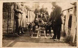 1 Oude Postkaart  Dogchart Dogcart  Attelage De Chiens Hondenkar  Photo Card U.K. Fotokaart - Dogs