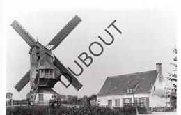 Beveren - Ijzer Molen/Moulin Originele Foto Jaren '70  B22 - Alveringem