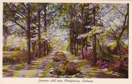 Alabama Montgomery Jasmine Hill Looking Down Pine Vista To The Egyptian Fountain - Montgomery