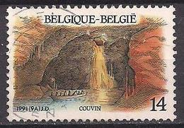 Belgien  (1991)  Mi.Nr.  2462  Gest. / Used  (3aa16) - Belgium