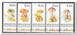 Moldavië 1995, Postfris MNH, Mushrooms - Moldavië