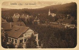 SCHIERKE Im Harz, Café Waldpark (1910s) AK - Schierke